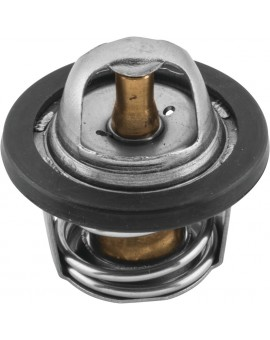 Thermostats - OEM 7052352, 7052308