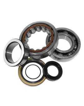 Crankshaft Bearing and Seal Kits